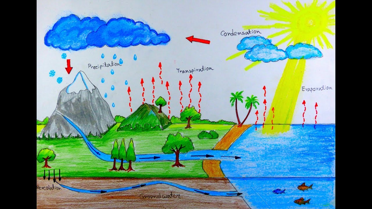how to draw water cycle  [ 1280 x 720 Pixel ]