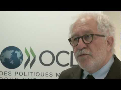 Promoting Youth Employment | African Economic Outlook 2012 - Mario Pezzini