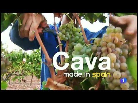 99-Fabricando Made in Spain - Cava
