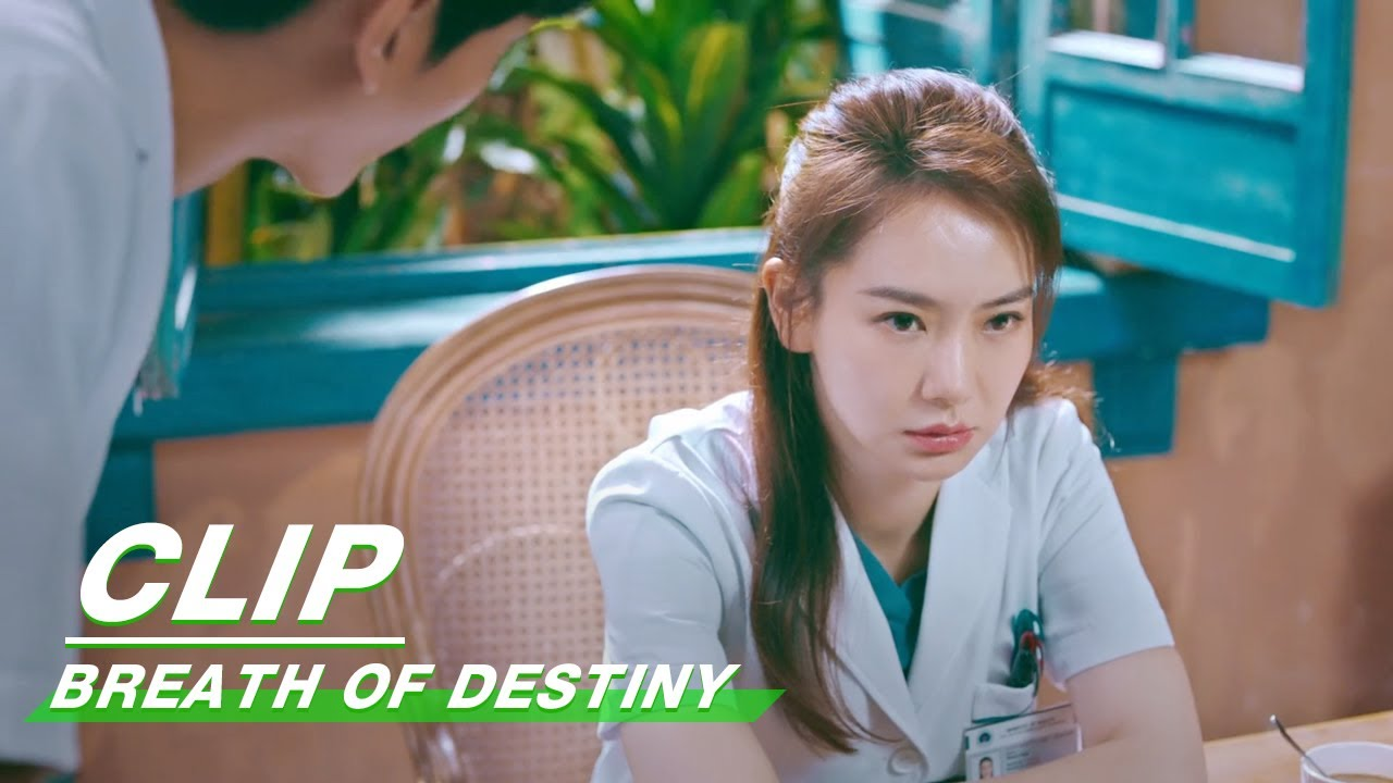 Clip: Stephy Qi Fears To Read Her Health Report? | Breath of Destiny EP28 | 一起深呼吸 | iQiyi