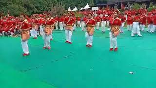 Van Wien Senam Kreasi Don Dapdape live Kebun Raya Bogor  HATERI 2018