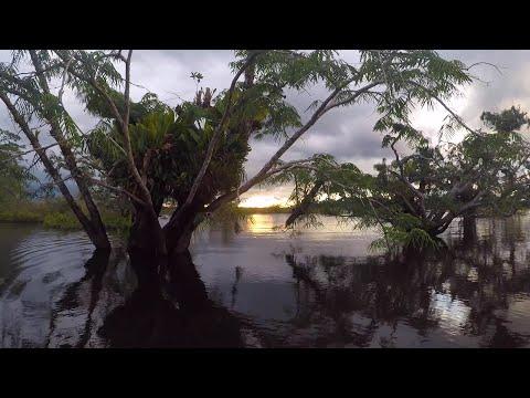 SOUTH AMERICA | Travel Video 2018