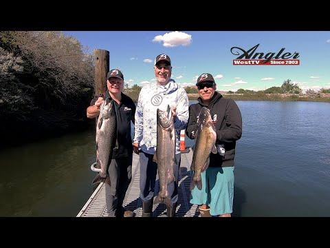 Plug Fishing Columbia River Spring Chinook