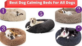 Best Washable Dog Beds   Best Dog Beds For Large,Medium And Small Dogs