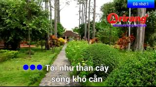 canh chim co don 2