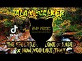 Alan Walker - The Spectre ✘ Alone ✘ Faded ✘ How You Like That | New Remix 2020