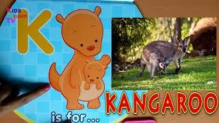 Sounds of Alphabets | ABC Phonics sounds of alphabets | Alphabets animals song | Kids Delight TV