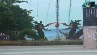 Санья.  о. Хайнань.  Обзорная экскурсия (Часть 1).  Представительство Акульей фабрики.  Август 2019.