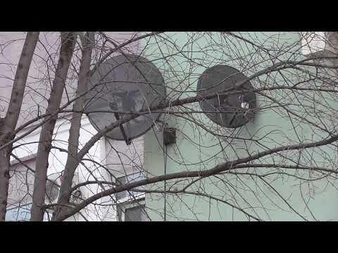 Городской дом заброшенный в городе Орле, город Орёл