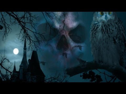 Download Fear Files   Hindi Serial   Full Episode - 9   Zee Tv Show