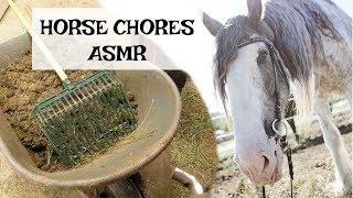 Barn Chores [ASMR] Horses, sweeping, gravel noises, water noises