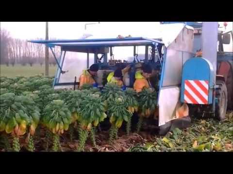 Teknologi Modern Alat Pertanian Canggih Banget Terbaru