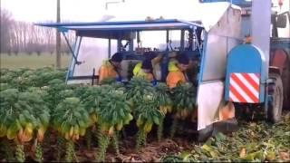 [10.13 MB] Teknologi Modern Alat Pertanian Canggih Banget Terbaru