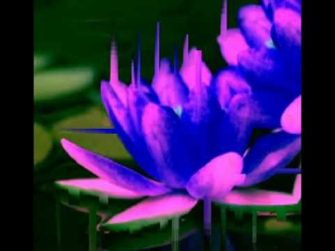 Fung Swayze- Pink Blue Lotus instrumentals- Chillout(full album)