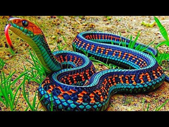 10 Serpientes Mas hermosas Que No Creeras Que En Verdad Existen