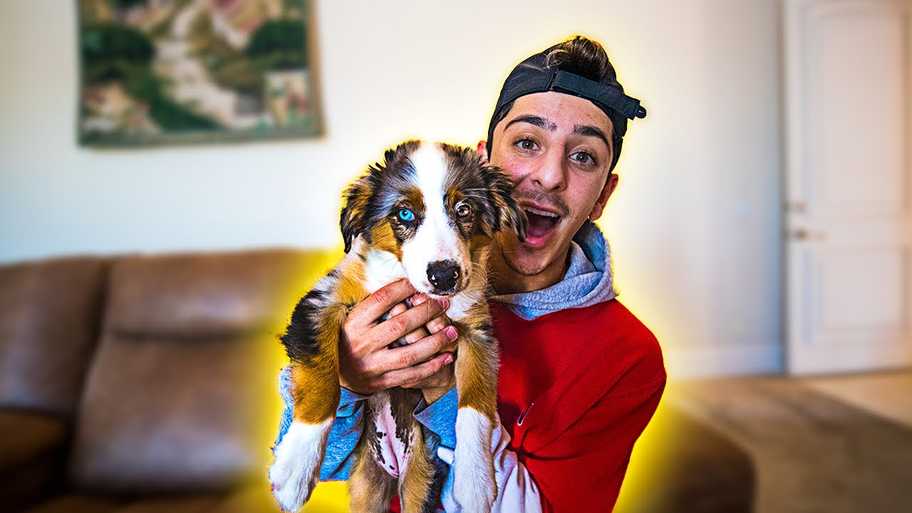 I GOT A NEW PUPPY!! **CUTEST DOG IN THE