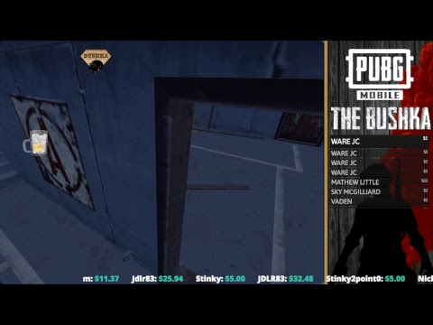 playing-squads-with-patrons-pubg-mobile-livestream