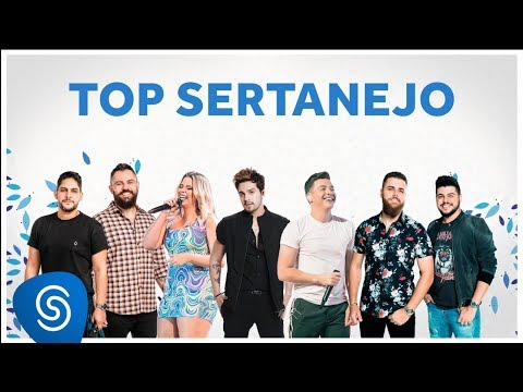 TOP SERTANEJO 2020 - As Melhores Do Ano