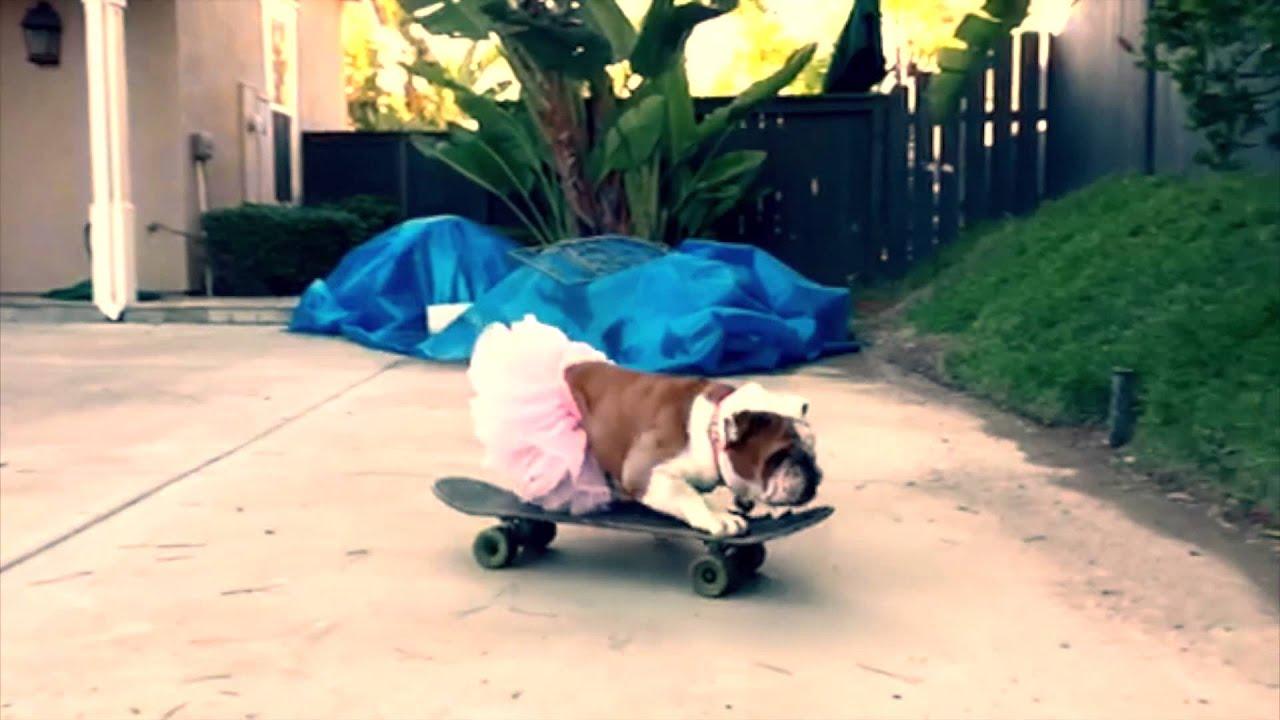 Skater Girl Wine Promo Video - YouTube