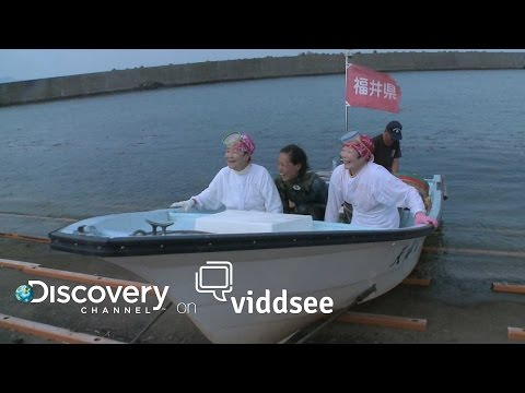 Sea Whisperers - These Women Are Mermaids Without The Tails // Discovery on Viddsee