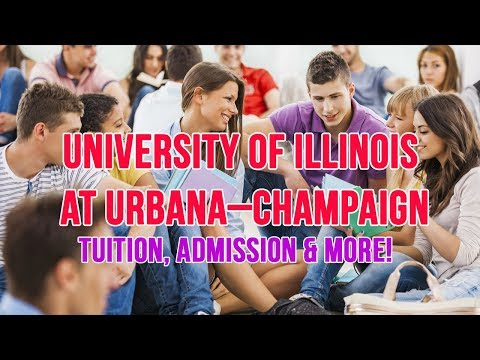 Should You School: University of Illinois at Urbana–Champaign