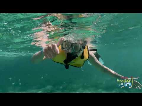 cancun-snorkeling-tour