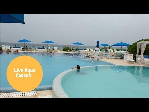 Live Aqua Sneak Peek