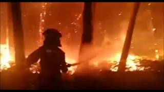 Portugal forest fires, multiple fires in Coimbra,  Castelo Branco, Viseu, Guarda