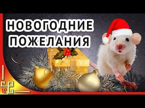 Новый Год 2020 ❄️ Пожелания на Новый Год от Крысы