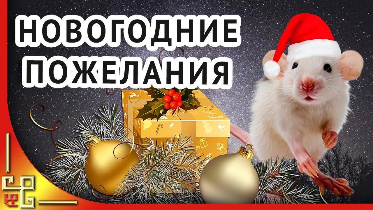 Новый Год 2020 ️ Пожелания на Новый Год от Крысы - YouTube