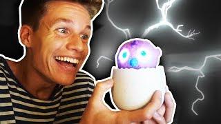 Mein Ei SCHLÜPFT 🐣😱 (Vlog)