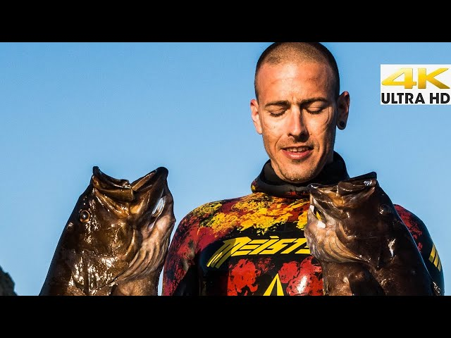 THE MOST WANTED FISH IN GREECE |Spearfishing Life 🇬🇷 [4K]✅