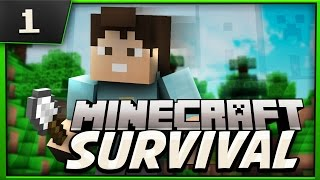 Minecraft Survival : Lets Play! Ep.1 Whole New World!