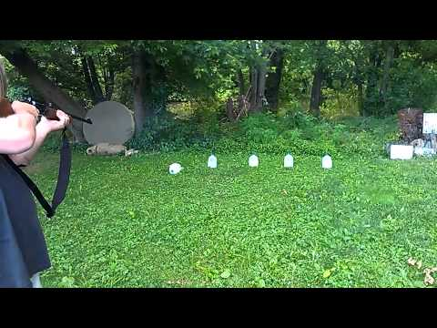Taurus Circuit Judge shooting 5 different bullets