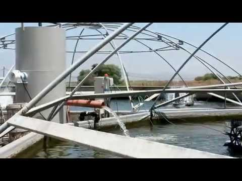 BioFishency - All-in-one water treatment system for aquaculture