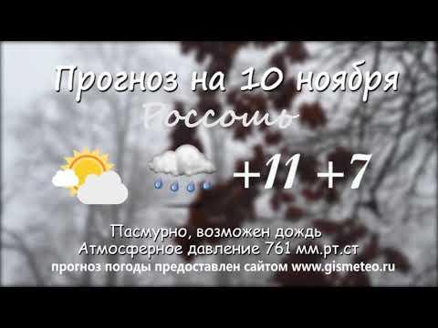 Прогноз погоды на 10.11.2019, Блокнот Россоши