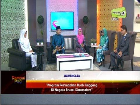 Program Pemindahan Buah Pinggang Di Negara Brunei Darussalam