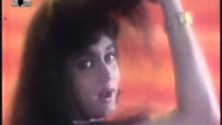 Hum Teri Mohabbat Mein - Phool Aur Angaar - 1993 - Download ...