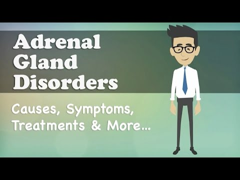 Adrenal Gland Disorders - Causes, Symptoms, Treatments & More…