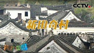 《地理·中国》 20201224 宝地桑田·新田奇村| CCTV科教 - YouTube