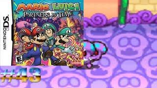 Maestro y aprendiz Shoob/Mario y Luigi: Compañeros en el Tiempo #43