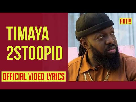 timaya-2-stoopid-video-lyrics
