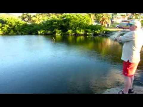 St maarten tarpon fishing youtube for St maarten fishing
