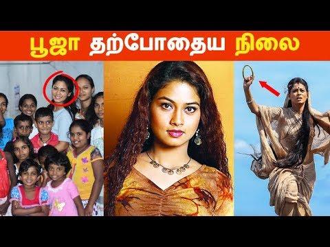 நடிகை பூஜா தற்போதைய நிலை | Tamil Cinema News | Kollywood News | Latest Seithigal