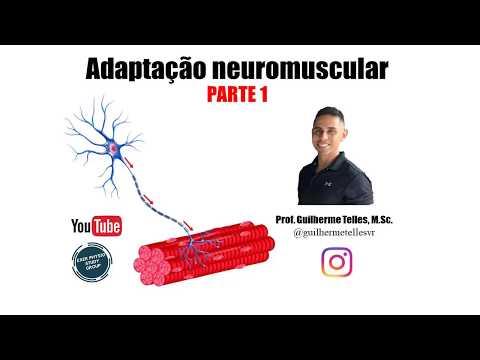 aula-sobre-adaptaÇÕes-neuromusculares---parte-1