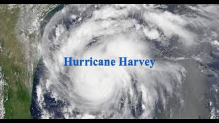 Ron Paul Discusses Hurricane Harvey
