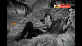 "Andaala oh chilakaa ""Telugu Movie Full Video Songs"" - Letha Manasulu - Harnath,Jamuna"