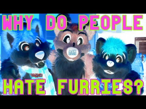 Why Do People Hate Furries?