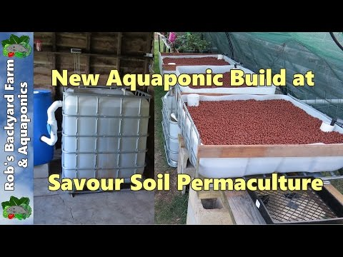 New Aquaponic system build at Savour Soil Permaculture.