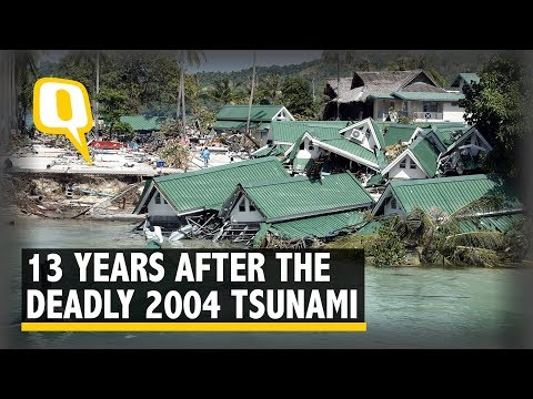 13 Years On, Remembering Those Who Died In The 2004 Tsunami   The Quint